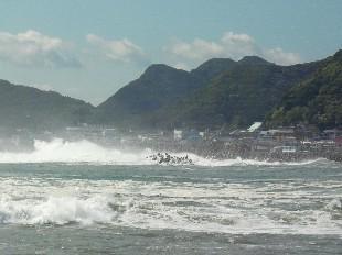 taifunoumi