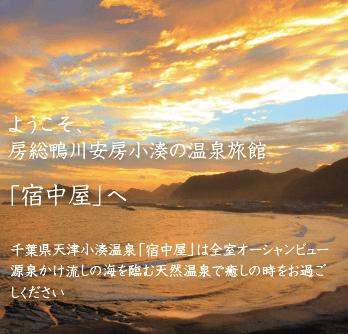 ようこそ、房総鴨川安房小湊の温泉旅館宿中屋へ。千葉県天津小湊温泉宿中屋は全室オーシャンビュー、海を臨む天然温泉で癒しの時をお過ごしください。